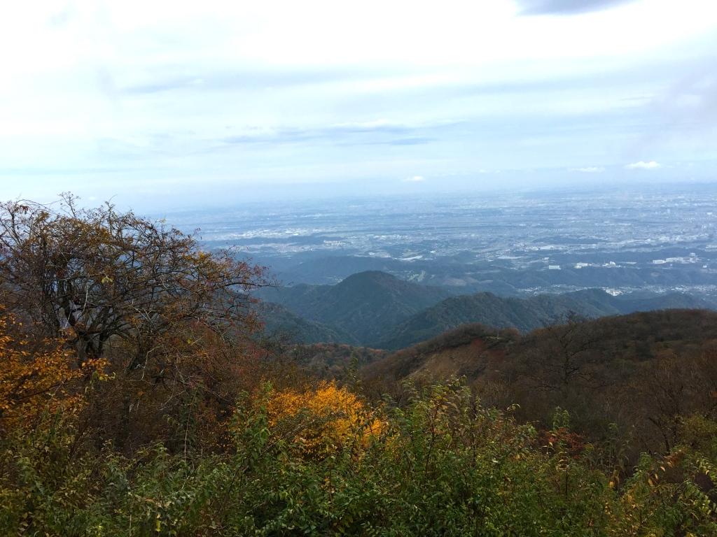 Up Mount Oyama